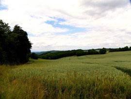 Im Osterzgebirge in der Nähe von Schlottwitz