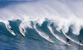 Surfeurs à Bondi Beach - Australie
