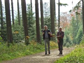 Westweg im Nordschwarzwald. Wanderung mit Manfred Wilhelm. Foto Rainer Sturm