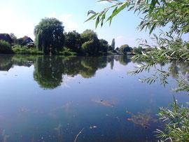 Mein neues Zuhause, der Arnumer See