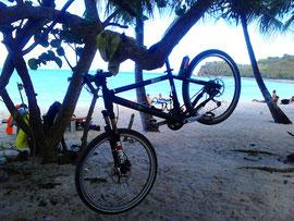 Radreparatur unter Palmen auf Tortola