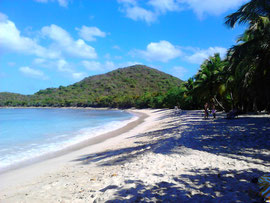 """Mein Strand"", Smugglers Cove auf Tortola"