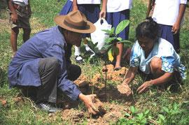 村の方も植林活動に参加。