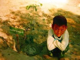 2001年の植林の写真  植林した木とチョースエリン君(当時6歳)