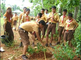 たくさんの種類の木を植林しました