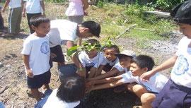 植林活動は今年で2年目