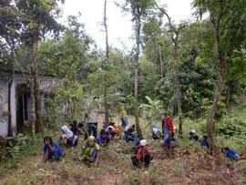 豊かな自然林に囲まれた学校