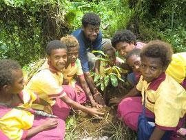 2010年11月、タウンの木など、100本をみんなで植えました