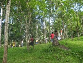 1999年に植林を開始した森の中で鳥や植物の観察をしている子どもたち