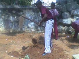 男の子たちはがんばって植林のための穴掘りをします