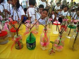 子どもたちが作ったウォーター盆栽。入れ物もペットボトルや空きビンなどのリサイクル。