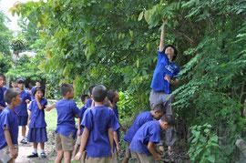 学校で植林中!
