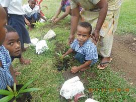 同校敷地内にある幼稚園の園児も植林に加わった。