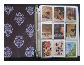 ACEO Sleeves and Binder