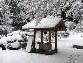 12月16日の雪景色