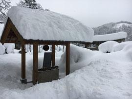 大雪の境内