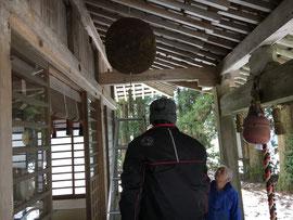 拝殿の旧大福杉玉