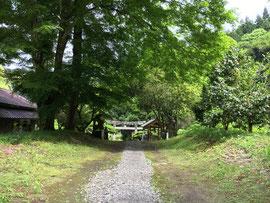 新緑のゲート