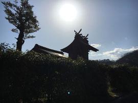 袋原神社 本殿