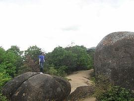 2012年5月 六甲山系巨石群にて