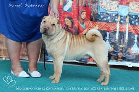 owner: Garaschuk S.