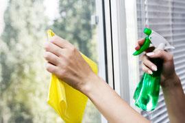 detergenti per la pulizia di tutte le superfici, ecologici e naturali