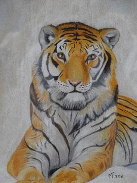 Le tigre septembre 2011