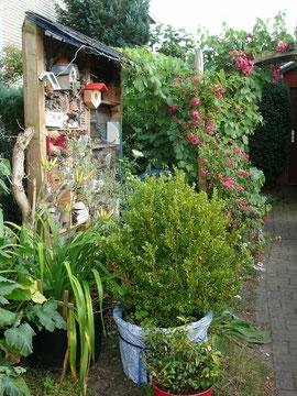 Insektenhotel und bepflanzte Kübel mit Blumen, Gehölzen und Gemüse
