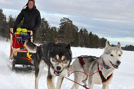 Lappland and  dogsled rides