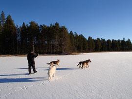 Lappland im Oktober