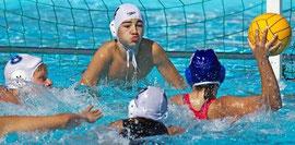 Das große Turnier des BSC bietet erfahrenen und jungen Wasserballern die Gelegenheit, ihr Können gegen internationale Konkurrenz unter Beweis zu stellen. Buxtehuder Tageblatt vom 06.09.2013