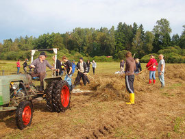 LBV-Kreisgruppe Neu-Ulm Biotoppflege Streuwiese Obenhausen Ried Schüler Traktor