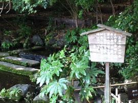 徳川家康にちなんだお茶の水の由来が書いてあります