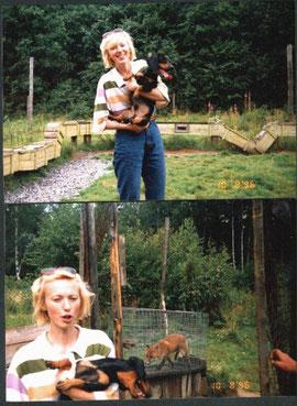 Вилька (апрель 1994 - апрель 2007)