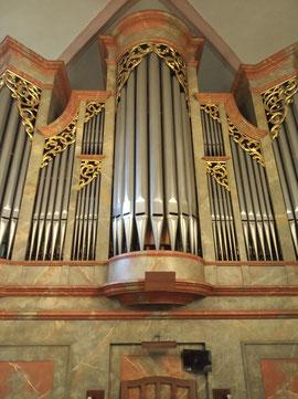 """El llamado """"órgano de Haydn"""""""