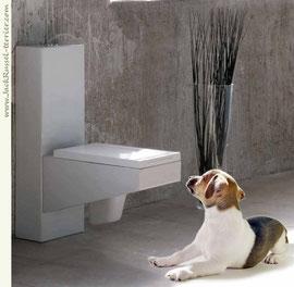 Приучение щенка к туалету