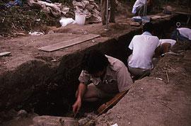 1992年:伊是名貝塚
