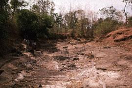 1990年:ウィドダーレン遺跡