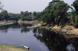 1994年:インドネシア共和国人類遺跡(トリニール遺跡)