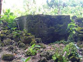 2013年:ペリリュー島の遺骨収集