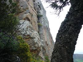 Klettergebiet San Bartolo, Sektor Los Cernicalos