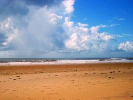 che shale spiaggia dorata kenya in2kenya