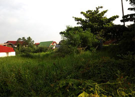 Plot Land for Release