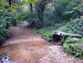 The old access road to 'Trewoofe Orchard' through ford with footbridge