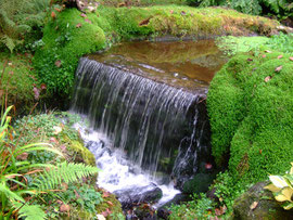 The stream running through 'Trewoofe Orchard'