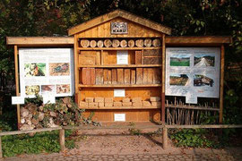 Wildbienen-Nistwand im Zoo Landau