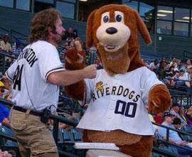 La mascotte dei Charleston Riverdogs (Singolo A - N.Y. Yankees)
