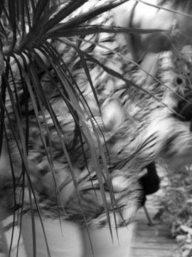 image floue d'une personne derrière une plante