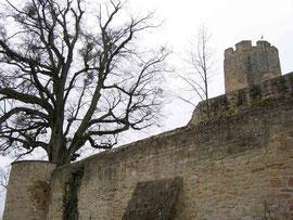 Foto 2005 (c) Traudi / außerhalb der Burgmauern