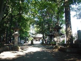 参道から社殿を望む